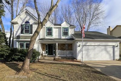 Buffalo Grove Single Family Home New: 1162 Sandhurst Drive