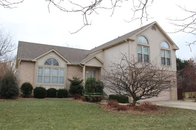 Lake Zurich Single Family Home For Sale: 390 Hidden Creek Road