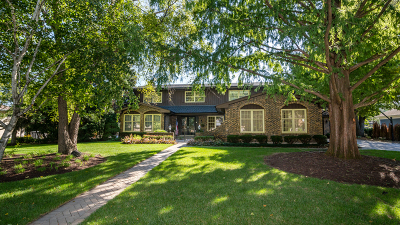 Arlington Heights Single Family Home For Sale: 1045 South Highland Avenue