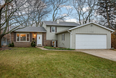 Wheaton Single Family Home For Sale: 1154 Windsor Drive