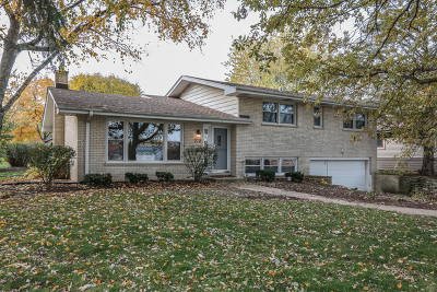 Naperville Single Family Home New: 370 Prairie Avenue