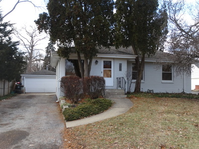 Palatine Single Family Home For Sale: 548 South Wilke Road