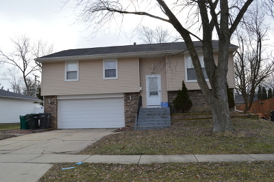 Streamwood Single Family Home For Sale: 326 Brunswick Court