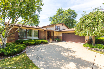 Arlington Heights Single Family Home New: 503 West Hackberry Drive