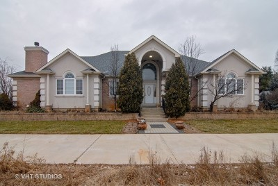 Du Page County, Kane County, Kendall County, Will County Single Family Home For Sale: 7200 Galena Road