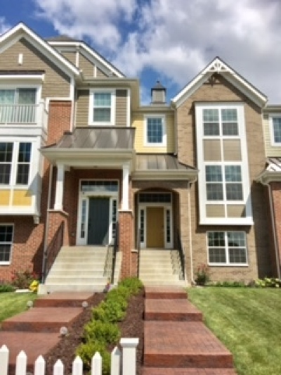 Naperville Rental For Rent: 4182 Royal Mews Circle #4182