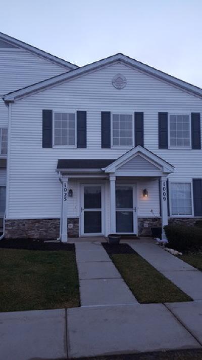 Carpentersville Condo/Townhouse For Sale: 1025 Silverstone Drive #1025
