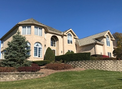 Orland Park Single Family Home For Sale: 10518 Misty Hill Road