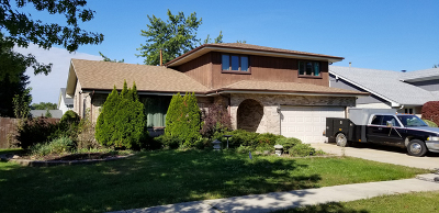 Tinley Park Single Family Home For Sale: 16818 Richards Drive