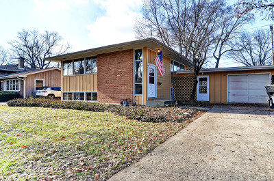 Naperville Single Family Home For Sale: 909 Emerald Drive