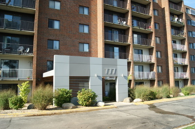 Naperville Rental For Rent: 777 Royal St George Drive #515