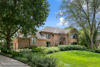 Lisle Single Family Home For Sale: 2237 Hidden Creek Court