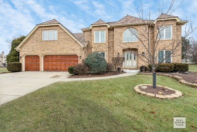Naperville Single Family Home New: 4310 Lone Tree Court