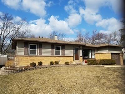 Palatine Single Family Home New: 1464 East Dorothy Drive
