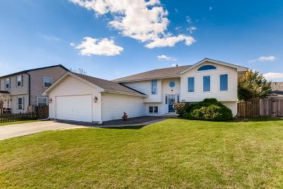 Plainfield Single Family Home New: 2409 Joe Adler Drive