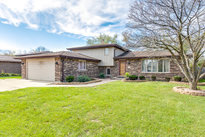 Orland Park Single Family Home For Sale: 14036 Catherine Drive