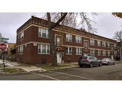 Chicago Multi Family Home New: 1015 North Lavergne Avenue
