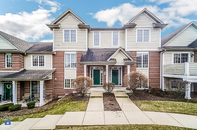 Orland Park Condo/Townhouse For Sale: 10700 Gabrielle Lane