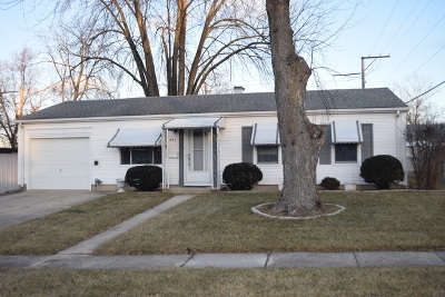 Romeoville Single Family Home For Sale: 401 Laurel Avenue