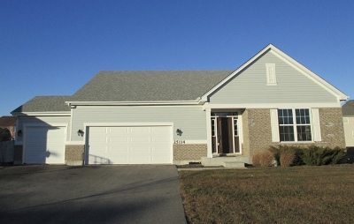 Plainfield Single Family Home New: 25114 West Zoumar Drive