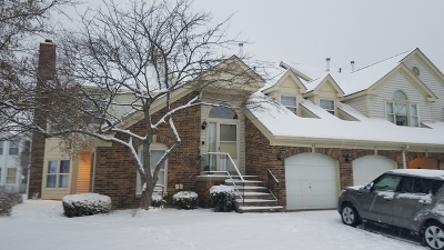 Buffalo Grove Condo/Townhouse New: 62 Willow Parkway