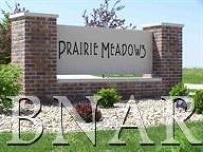 Heyworth Residential Lots & Land For Sale: 603 Prairie Meadows Drive