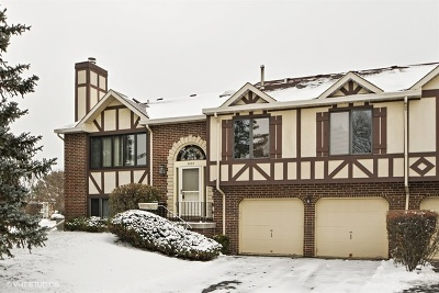 Tinley Park Condo/Townhouse New: 9255 Drummond Drive #9255