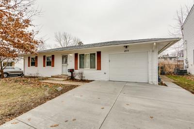 Buffalo Grove Single Family Home New: 271 Mohawk Trail
