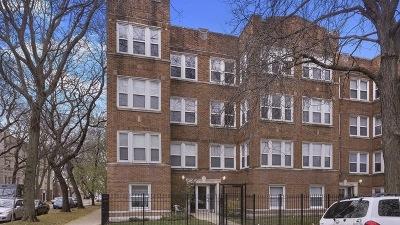 Condo/Townhouse New: 4902 North Springfield Avenue #2