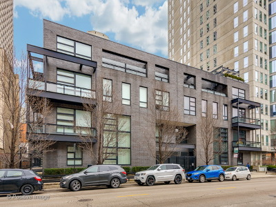 Condo/Townhouse New: 1015 North Dearborn Street