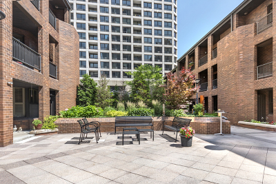 Condo/Townhouse New: 1000 North State Street #5