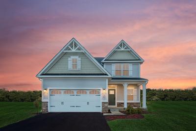 Gilberts Single Family Home New: 852 Mario Lane