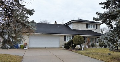 Bensenville Single Family Home For Sale: 1453 Indian Hill Drive