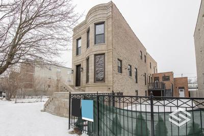 Chicago Single Family Home New: 4010 South Ellis Avenue