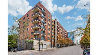 Condo/Townhouse New: 873 North Larrabee Street #703