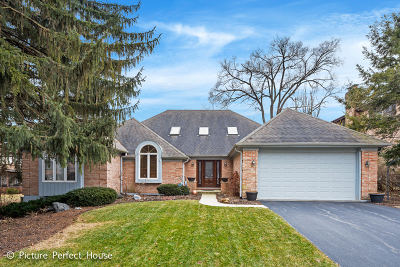 Lisle Single Family Home For Sale: 1507 Burning Tree Court