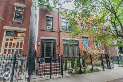 Chicago Single Family Home New: 1125 North Winchester Avenue