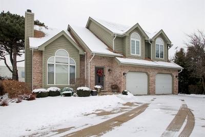 Mount Prospect Single Family Home For Sale: 719 South Chris Lane