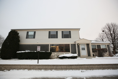 Palatine Condo/Townhouse New: 1248 Inverrary Lane #9B