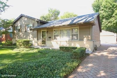 Du Page County Rental New: 800 Jefferson Street