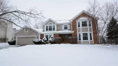 Lake Zurich Single Family Home For Sale: 542 Carolian Drive