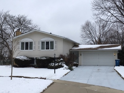 Downers Grove Single Family Home New: 754 Ridgeview Street