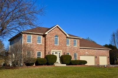 St. Charles Single Family Home For Sale: 5n630 Leslie Court