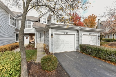 Naperville Condo/Townhouse New: 1267 Rhodes Lane