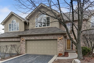 Hinsdale Condo/Townhouse New: 418 Ashbury Drive #418