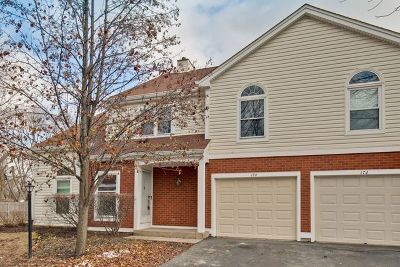 Palatine Condo/Townhouse New: 174 Stonington Drive