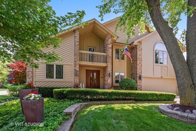 Arlington Heights Single Family Home New: 215 East Ryan Court