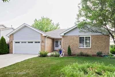 Romeoville Single Family Home New: 631 Superior Drive