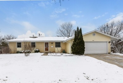 Hoffman Estates Single Family Home For Sale: 865 Harrison Lane