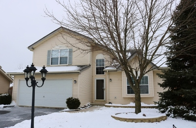 Plainfield Single Family Home New: 4600 Mallard Lane